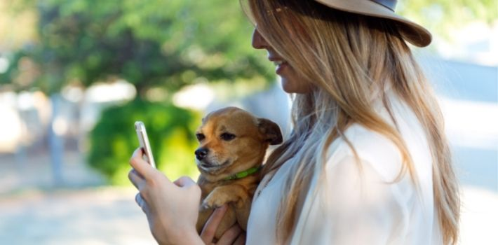 Woman looking her phone with a dog